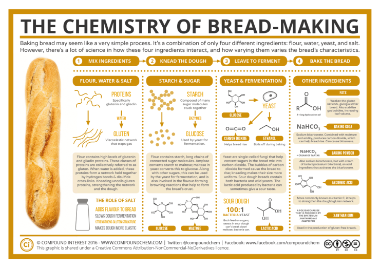The-Chemistry-of-Bread-Making